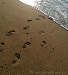Marcher vers l'océan Pacifique
