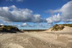 Dune mouvante de Skagen
