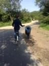 AmagerFaelled - La piste cyclable