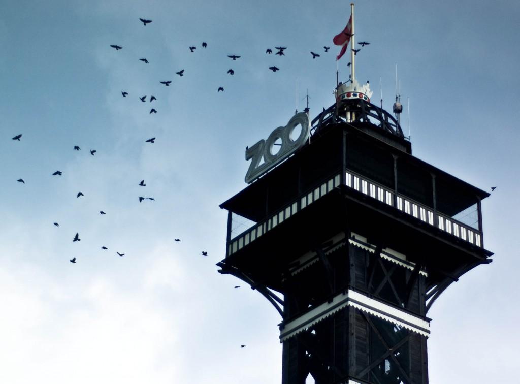 Copenhagen_Zoo_Tower_Wikipedia