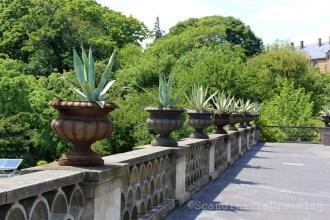 Terrasse de la grande serre du jardin botanique de Copenhague