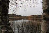 Lac au calme plat