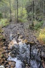 Rivière suédoise