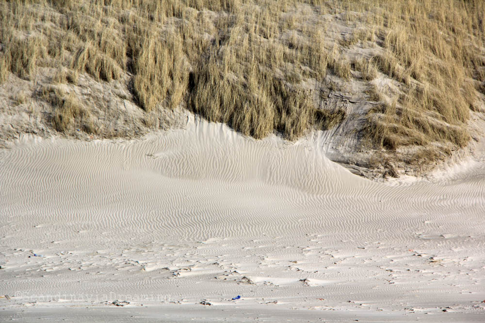 Dune de Vejers