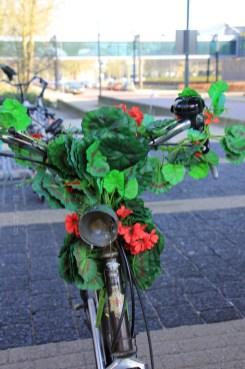Vélo fleurs
