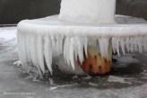 Détails eau gelée