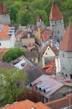 Muraille de Tallinn