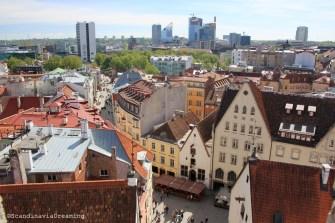 Tallinn vue d'en haut