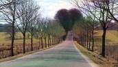 Route du Château