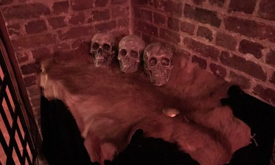 waiting-room-skulls