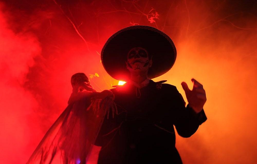 Hoge korting voor Halloween Nights in Attractiepark Toverland