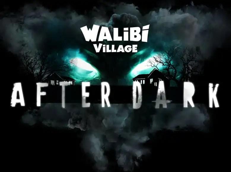 Dit gebeurt er in de After Dark huisjes van Walibi Village
