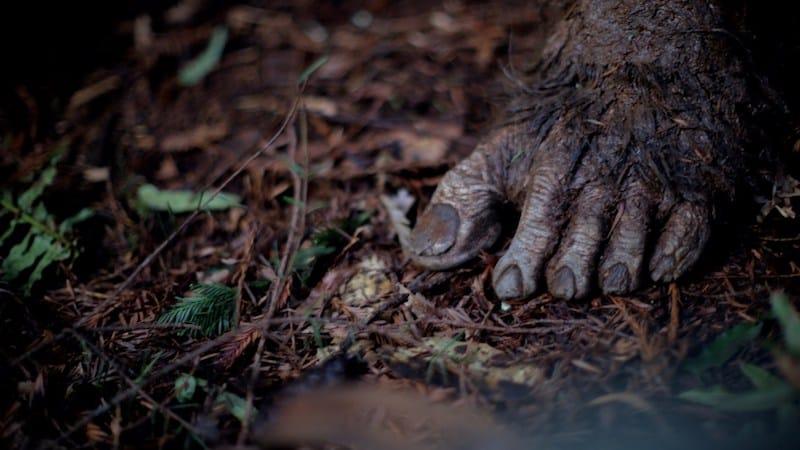 primal-foot