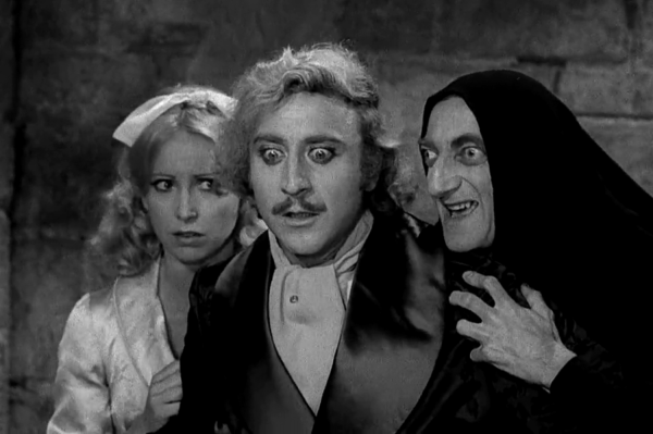 young-frankenstein-image