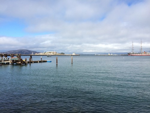 A bit of birding at Fisherman's Wharf.