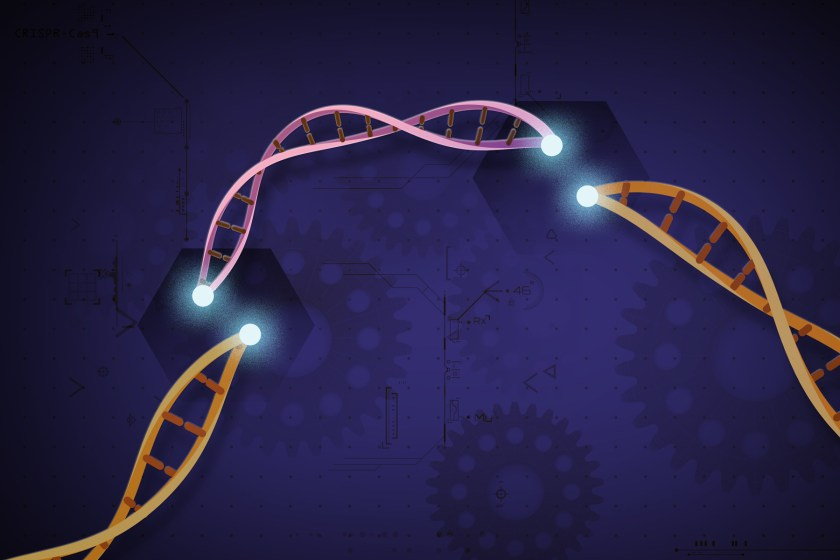 a DNA molelcule that has a fragment cut out of it. Scientific drawing and scribble are faint in the background