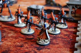 The Xeno witchmaster commanding his spirit warrior warband of corsairs.