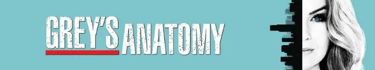 Resultado de imagen para greys anatomy banner 2017