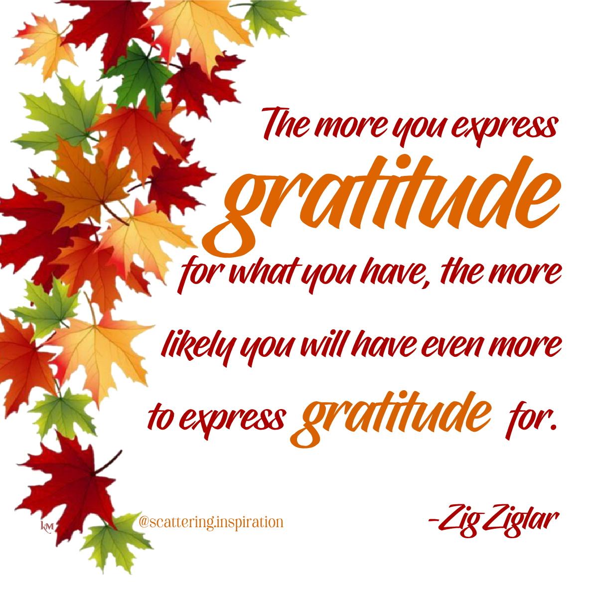 more gratitude