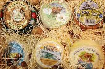Gastronomia quesos asturianos