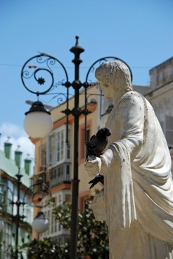 Marble statue with a pigeon on its hand in the Plaza de las Flores Cadiz Cadiz Province Andalusia Spain Western Europe.
