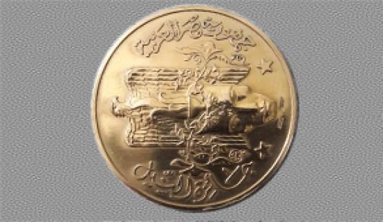 جائزة النيل
