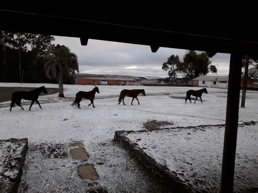 Neve em Lages