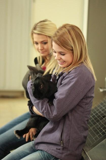 cuddle-bunnies