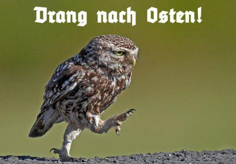 drang_nach_osten