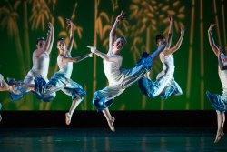 Video: 50 years of dance