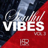 VA - Soulful Vibes Vol 3 / HSR260 / HSR Records