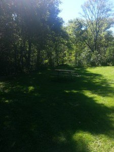 Betty Sutherland Trail (11)