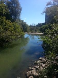 Betty Sutherland Trail (4)