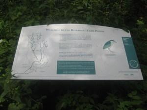 19. Riverdale Farm  ponds