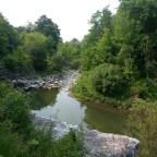 Scenes From Warden Woods Park