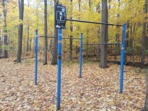 Brimley Woods Park 2