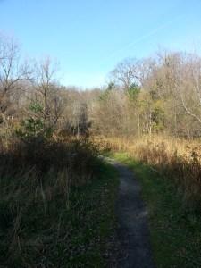 Massey Creek Trail (3)