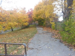 North Scarborough Green Loop East Highland Creek 1