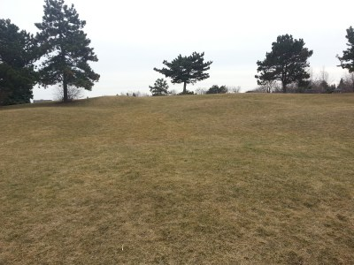 North Bridlewood Park 1