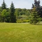 Scenes From Milliken Park