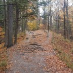 Scenes From Rouge National Urban Park – Vista Trail