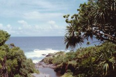 On the island of Maui, a scene from the Seven Sacred Pools