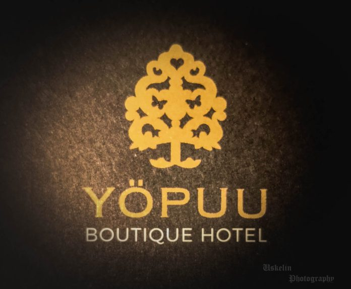 Boutique Hotelli Yöpuu