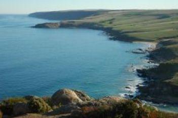 Newland Head