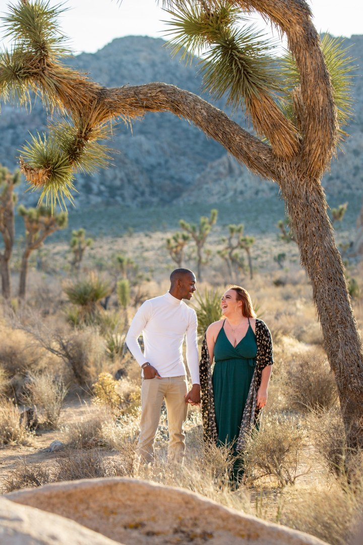 Couple holding hands and standing under a Joshua Tree during their sunset engagement photoshoot