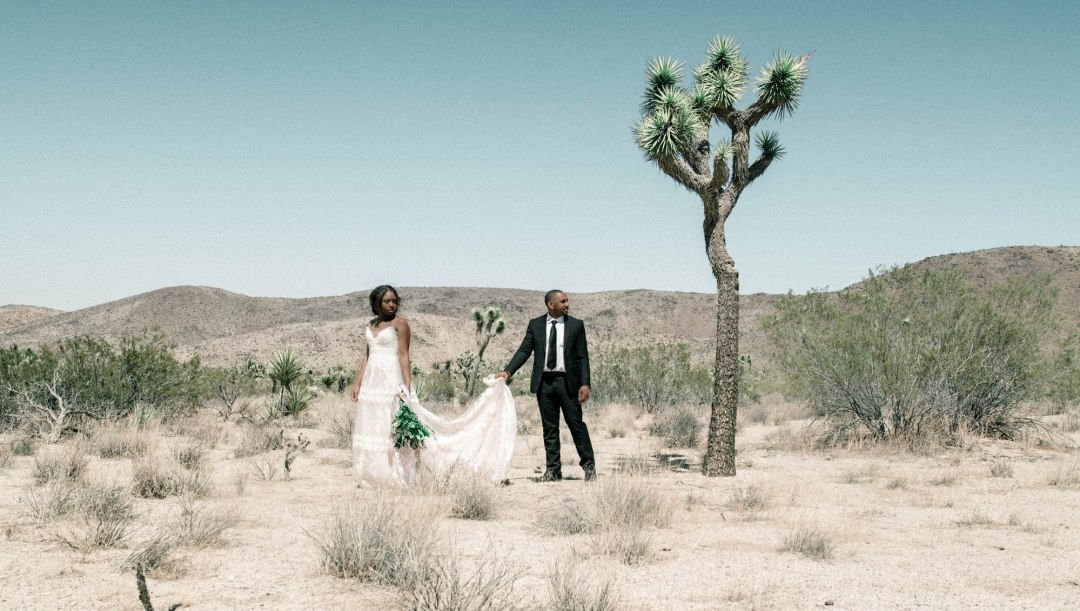 Joshua Tree elopement - allison-heine