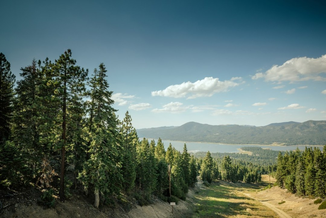 Big Bear elopement location ideas