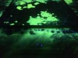 scenografia-vsmu-biela-noc-jan-ptacin-32