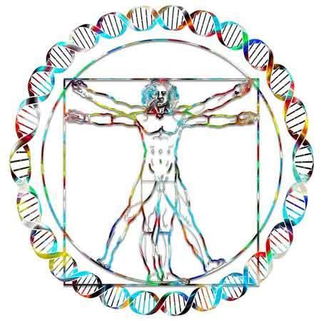 PEMF Magnawave, Scented Balance, Bio wrx, holistic chronic pain relief