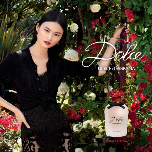 Dolce and Gabbana Rosa Excelsa Poster